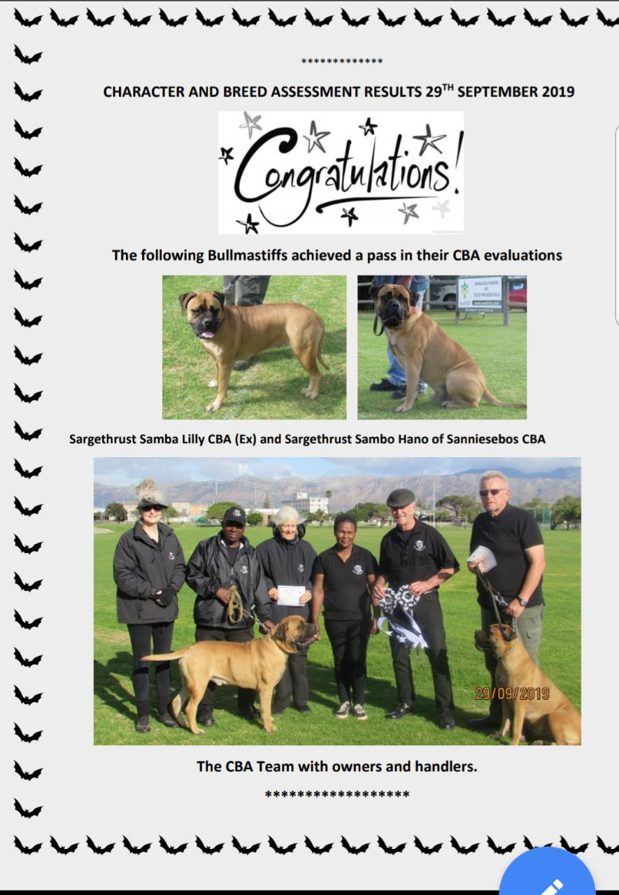 ref_bullmastiff_CBA_CBC_pup_champion_south_africa